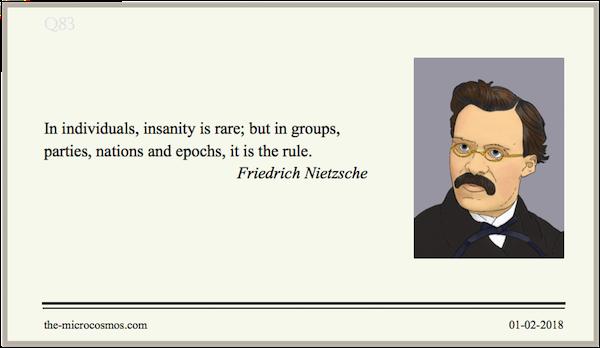 20180201:Friedrich Nietzsche:Insanity