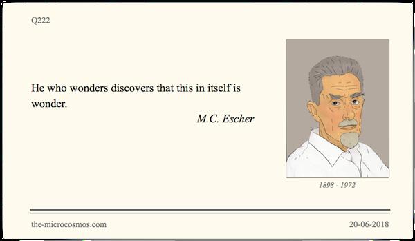 Q222_20180620_M.C. Escher_Wonder.png