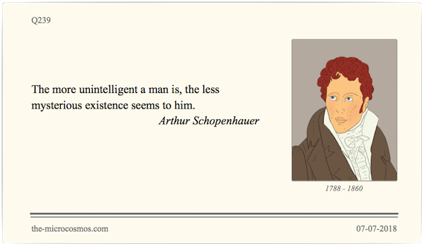 Q239_20180707_Arthur Schopenhauer_Mystery.png