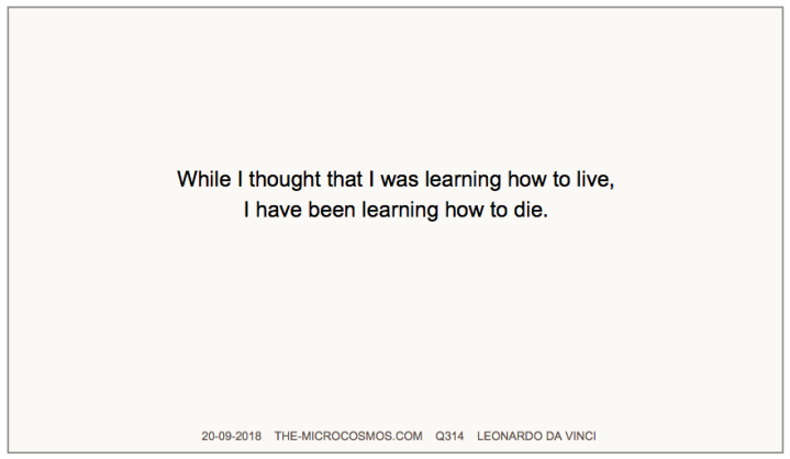 Q314_20180920_Leonardo da Vinci_Learning how to live.png